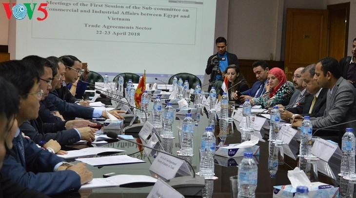 Việt Nam và Ai Cập tăng cường hợp tác thương mại - ảnh 1