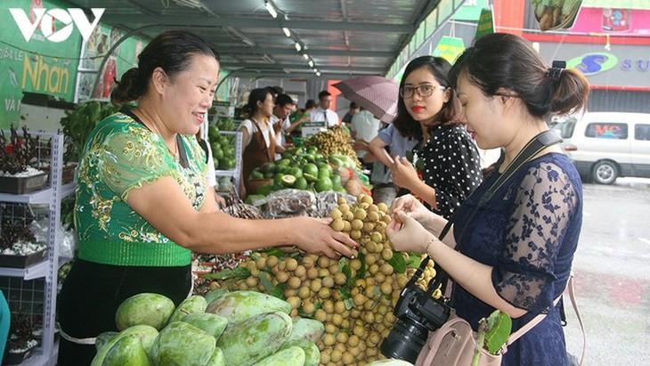 Tỉnh Sơn La tăng cường xuất khẩu nông sản - ảnh 1