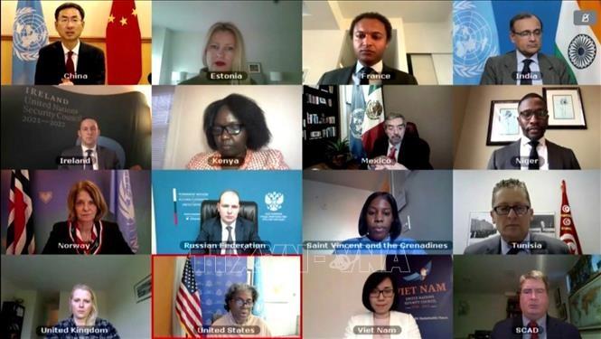 Việt Nam ủng hộ LHQ thông qua các văn kiện về Nam Sudan, Cộng hòa Trung Phi, Somalia và Libya - ảnh 1