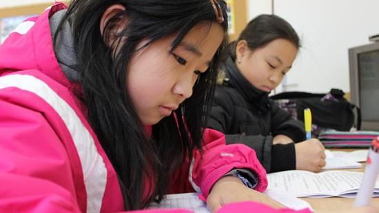 Dạy trẻ nhớ về cội nguồn bằng tiếng Việt - ảnh 4
