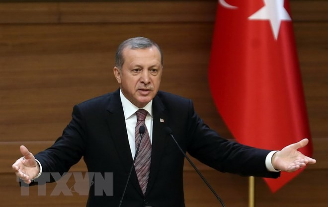 Erdogan wins Turkey's presidential elections - ảnh 1