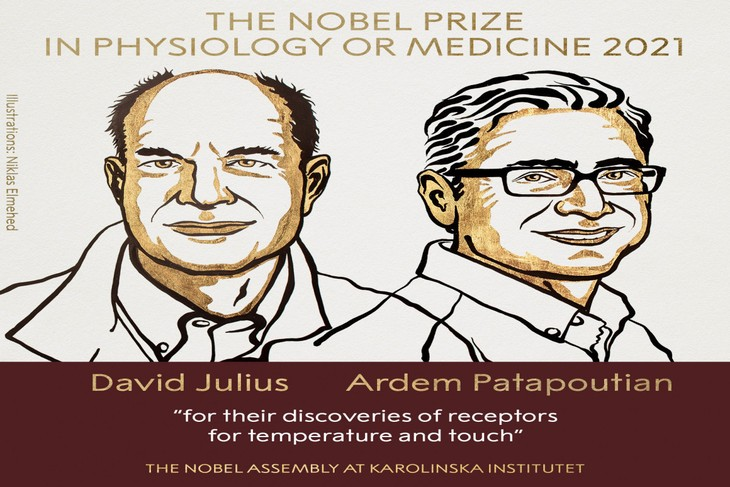 Americans Julius and Patapoutian win 2021 Nobel Prize in Medicine - ảnh 1