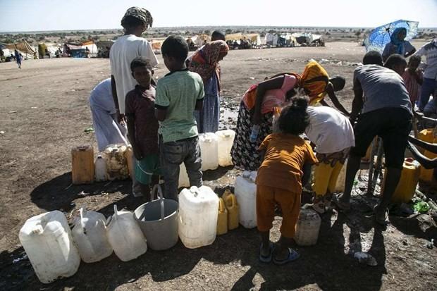 Всемирная продовольственная программа увеличивает продовольственную помощь эфиопскому региону Тигрей - ảnh 1