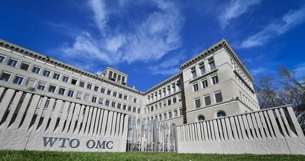 Вьетнам поддерживает центральную роль ВТО - ảnh 1