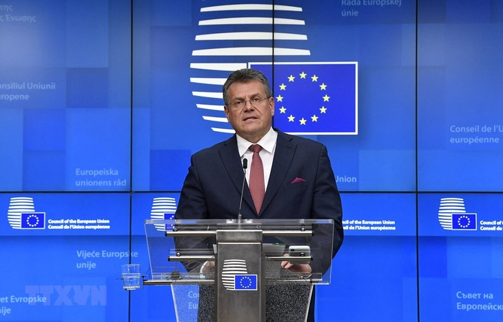 ЕС опубликовали целевые показатели по занятости и гендерному равенству к 2030г. - ảnh 1