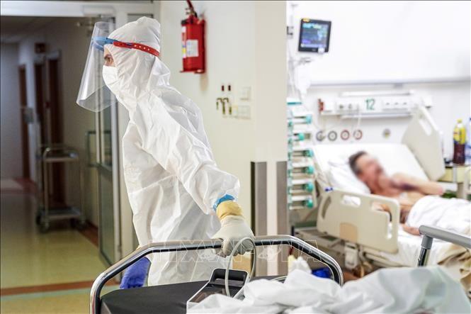 Более 134,3 млн. человек заразились COVID-19 во всем мире - ảnh 1