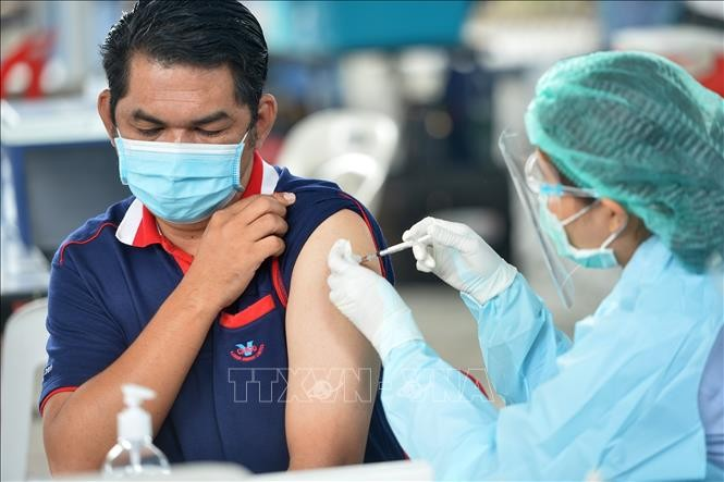 В мире около 3 млн. человек умерли от коронавируса  - ảnh 1