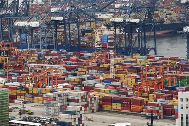 Впервые опубликованы показатели китайско-асеанской торговли - ảnh 1
