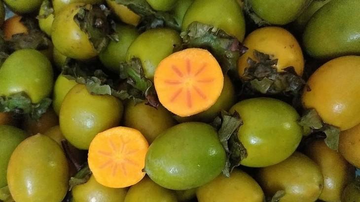 Маринованная хурма – простой осенний фрукт Ханоя - ảnh 1