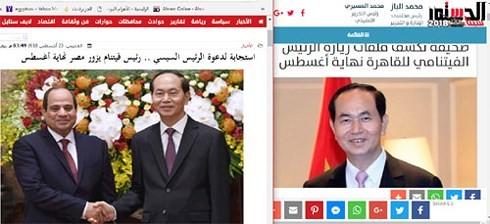 """Chuyến thăm của Chủ tịch nước Việt Nam có """"Tầm quan trọng đối với Ai Cập và Châu Phi trên trường quốc tế"""" - ảnh 1"""