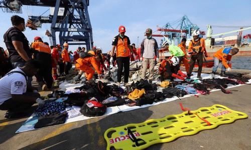 Không có công dân Việt Nam trên máy bay bị tai nạn ở Indonesia - ảnh 1