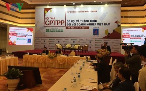 Hiệp định CPTPP – Cơ hội và thách thức đối với doanh nghiệp Việt - ảnh 1