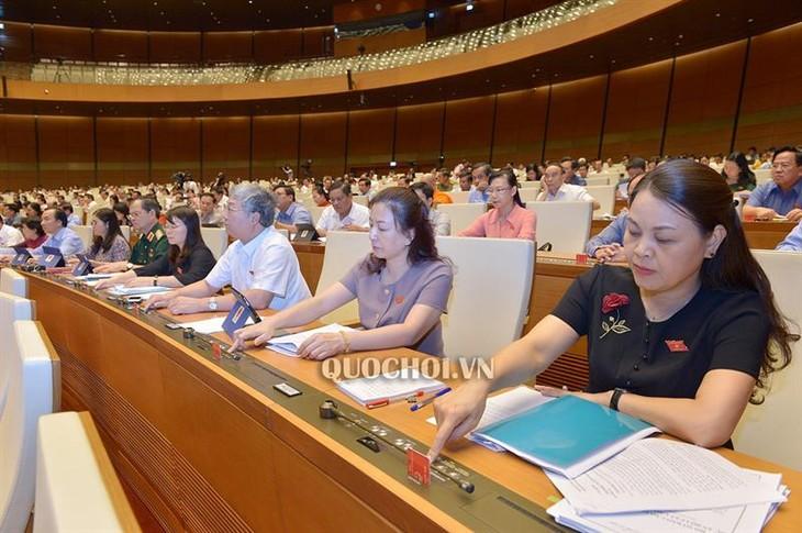 Quốc hội bỏ phiếu phê chuẩn việc bổ nhiệm Thẩm phán Tòa án nhân dân tối cao - ảnh 1