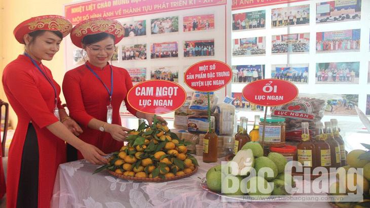 Bắc Giang: Khai mạc hội chợ cam, bưởi Lục Ngạn 2019 - ảnh 1