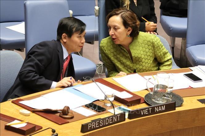 Việt Nam chủ trì phiên họp về củng cố hòa bình ở Tây Phi - ảnh 1
