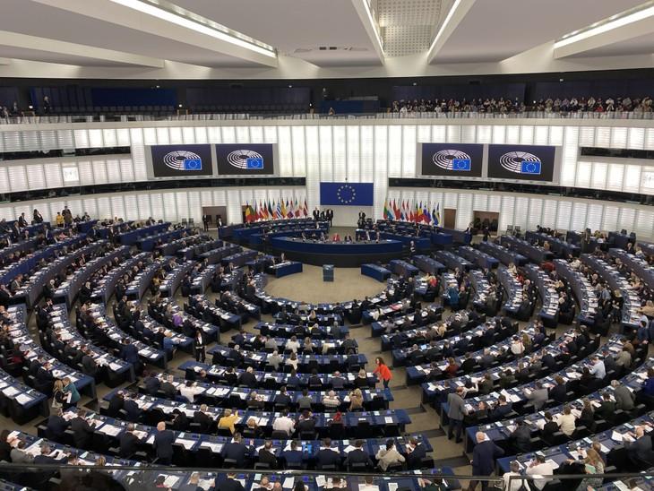 Nghị viện châu Âu phê chuẩn EVFTA và EVIPA với Việt Nam - ảnh 1