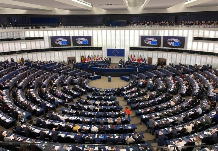 ILO hoan nghênh Nghị viện châu Âu thông qua hiệp định thương mại tự do (EVFTA )với Việt Nam - ảnh 1