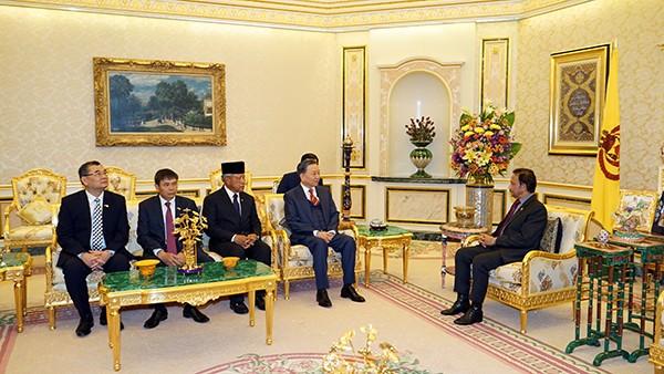 Bộ trưởng Bộ công an Tô Lâm chào xã giao Quốc vương Brunei - ảnh 1