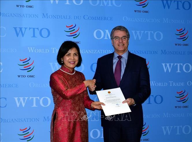 Việt Nam cam kết tiếp tục phối hợp tích cực, chặt chẽ với WTO  - ảnh 1