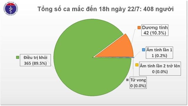 Việt Nam ghi nhận thêm 7 ca mắc COVID-19 là chuyên gia nước ngoài - ảnh 1