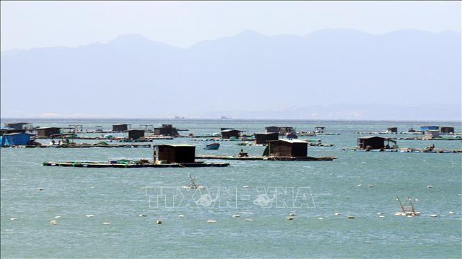 Đẩy nhanh chương trình điều tra tài nguyên, môi trường biển, hải đảo - ảnh 1
