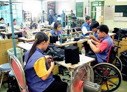 Việt Nam chú trọng cải thiện chất lượng cuộc sống của người khuyết tật - ảnh 1