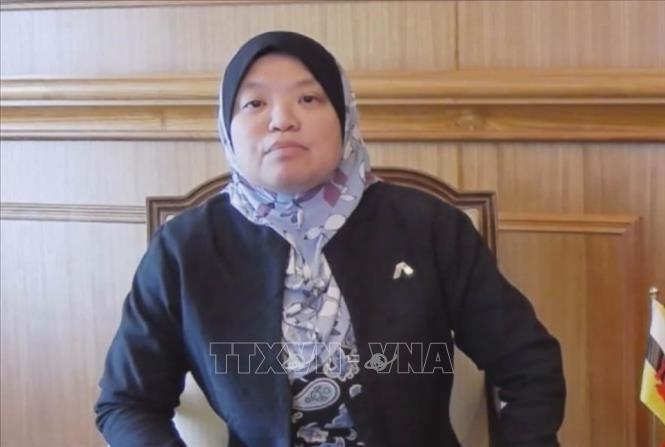 Nghị sĩ Brunei: Việt Nam vượt khó khăn hoàn thành nhiệm kỳ Chủ tịch AIPA - ảnh 1