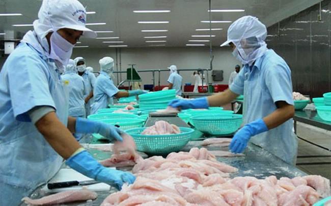 Xuất khẩu cá tra sang Anh tăng mạnh        - ảnh 1