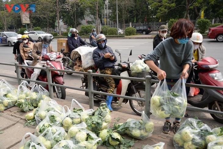 Người dân chung tay giải cứu nông sản Hải Dương - ảnh 2