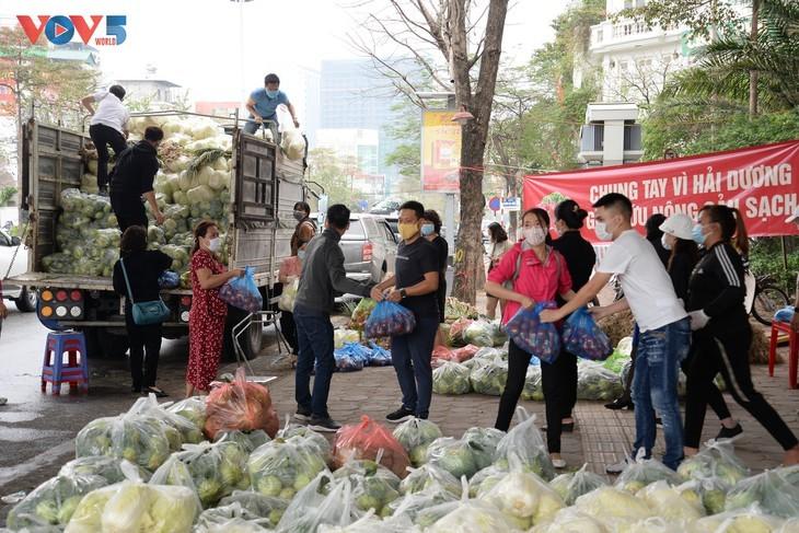 Người dân chung tay giải cứu nông sản Hải Dương - ảnh 1