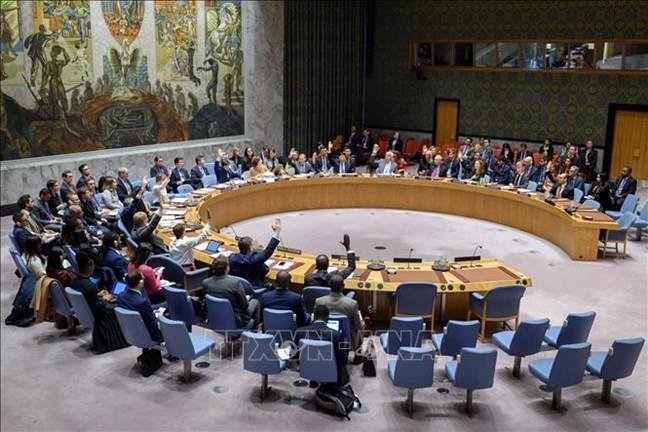 Việt Nam đóng góp hiệu quả vào công việc của Hội đồng Bảo an Liên Hợp Quốc - ảnh 1