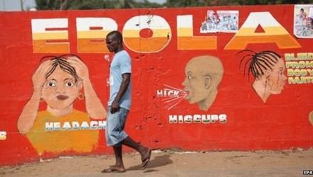 В Либерии была ликвидирована эпидемия вируса Эбола - ảnh 1