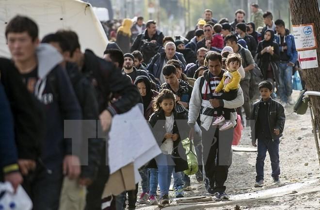 Канада продолжает оказывать помощь сирийским беженцам - ảnh 1