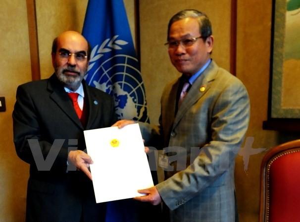 ФАО высоко оценила преимущества Вьетнама в сотрудничестве «Юг-Юг» - ảnh 1
