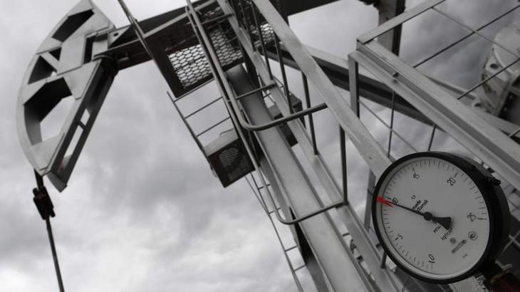 Россия планирует сократить использование нефти и газа - ảnh 1