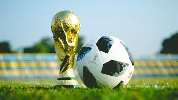 Ассоциация европейских клубов высказалась против идеи ФИФА о проведении ЧМ каждые два года  - ảnh 1