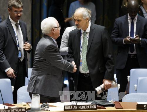 联合国安理会就叙利亚局势举行会议 - ảnh 1