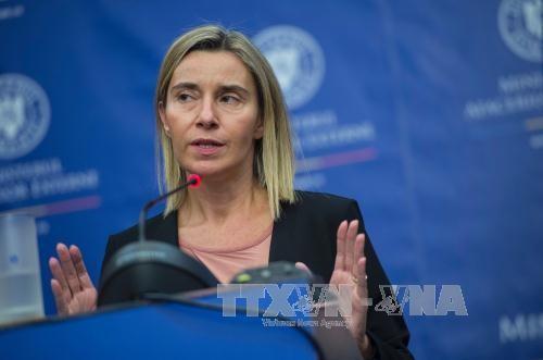 欧盟促进实施共同国防安全战略 - ảnh 1