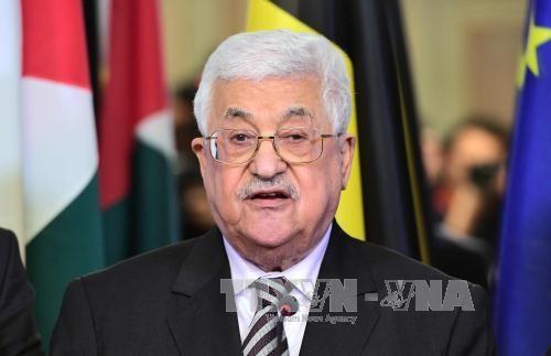 巴勒斯坦总统阿巴斯开始访问埃及 - ảnh 1