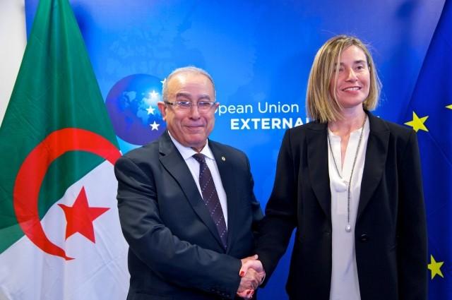欧盟希望深化与阿尔及利亚的伙伴关系 - ảnh 1