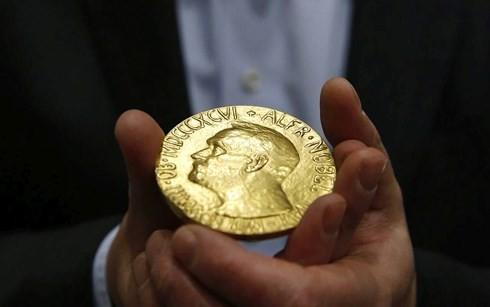 2017年诺贝尔奖颁奖典礼在瑞典和挪威举行 - ảnh 1
