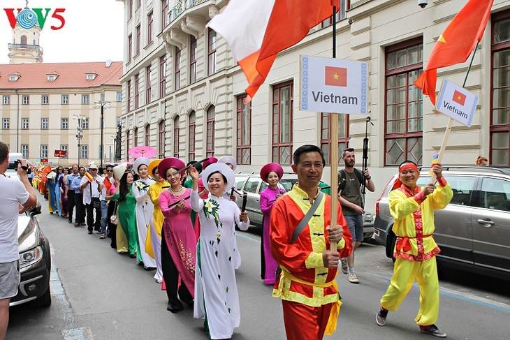越南参加2018年捷克全国少数民族文化节 - ảnh 2