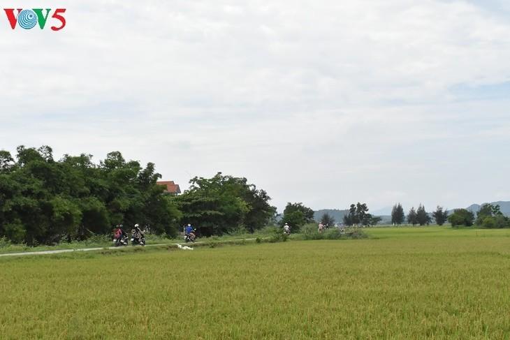 探索清水正村的古老空间 - ảnh 1