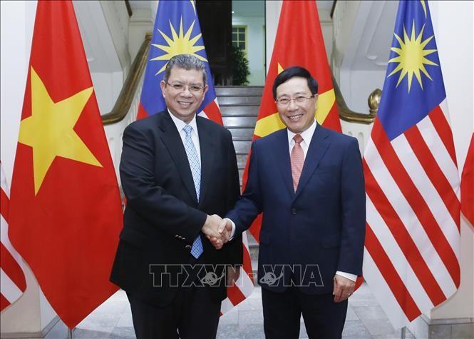 越南政府副总理兼外长范平明与马来西亚外长赛富丁举行会谈 - ảnh 1