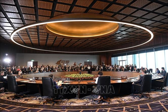 APEC支持自由贸易 - ảnh 1