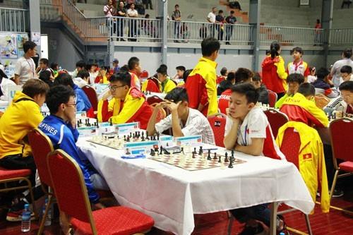 越南队在东南亚国际象棋锦标赛上取得优异成绩 - ảnh 1