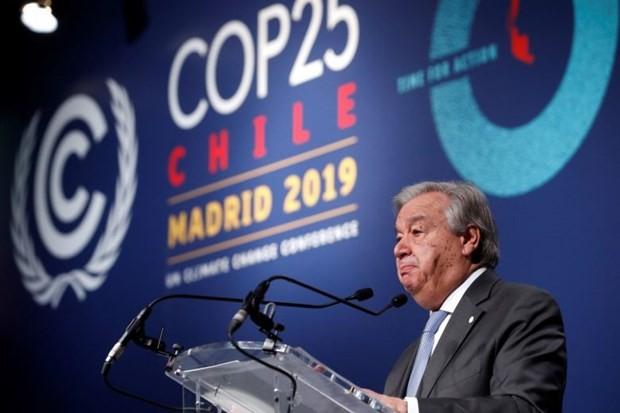联合国秘书长古特雷斯对COP25结果表示失望 - ảnh 1