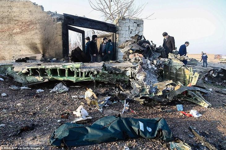 一架客机在伊朗坠毁,176人无人生还 - ảnh 1