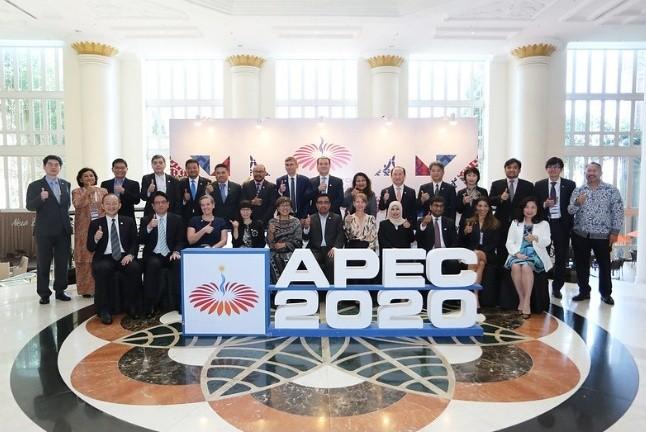 亚太经合组织第一次高官会在马来西亚举行 - ảnh 1