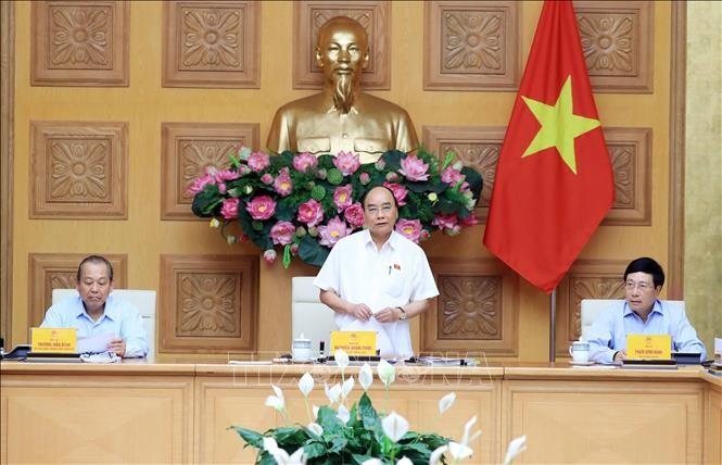越南政府常务委员会讨论帮助石油、航空企业解决困难的措施 - ảnh 1